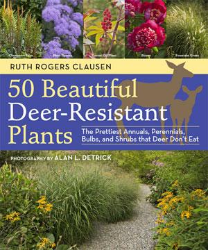 50 Beautiful Deer Resistant Plants Cover