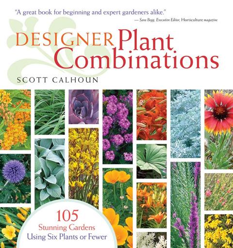 Designer Plant Combinations cover