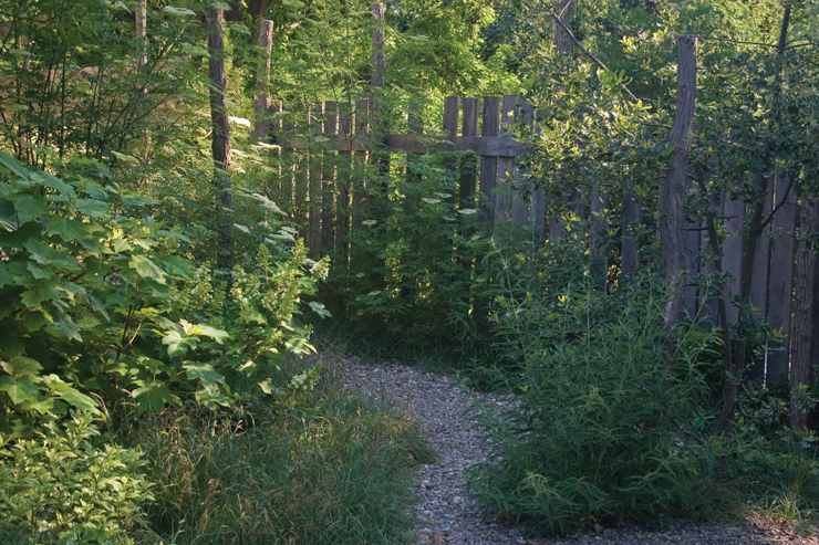 Rustic fence in Brine Garden courtyard