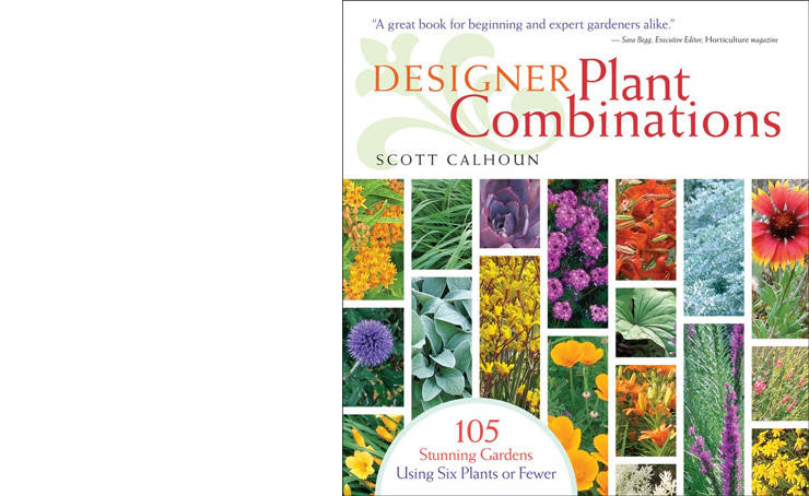 Designer Plant Combinations by Scott Calhoun