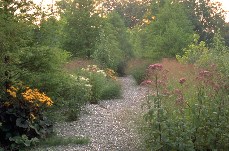 Gravel path in the Brine Garden, by Michael Dodge